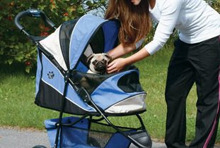 dog-strollers-for-small-dogs